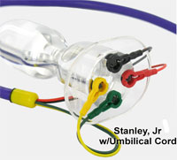 Stanley, Jr. w/ Umbilical Cord attached